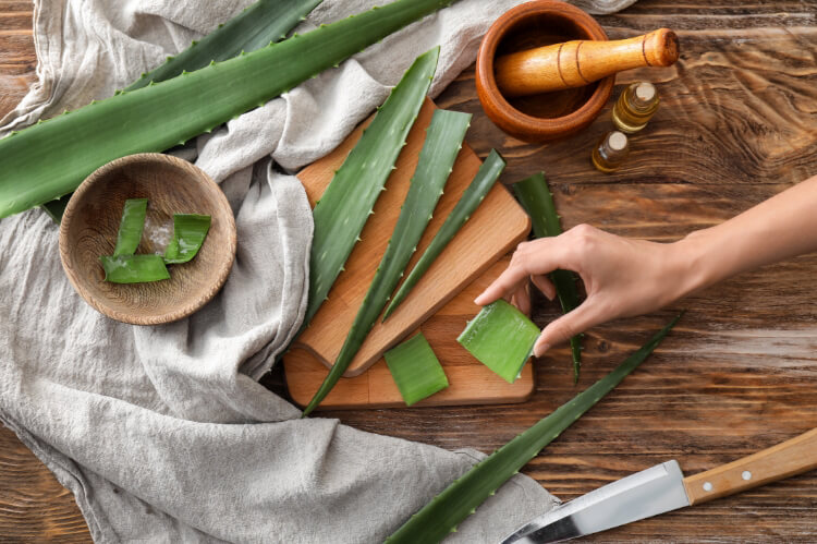 Evde Aloe Vera Maskesi İle Cildini Besle-2