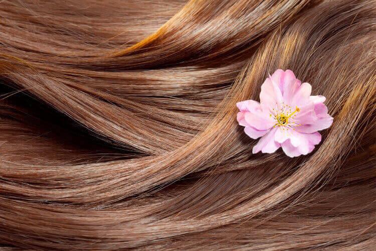 Kiraz Çiçeğinin Saça Faydaları-1