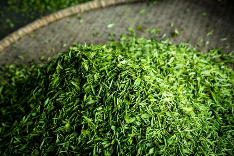 Yeşil Çayı Bakım Rutininize Dahil Edin-1