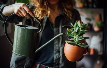 Evde Yapacağınız Küçük Değişiklikler Sizi Stresten Kurtarır mı?